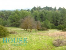 Land for sale in Oropos