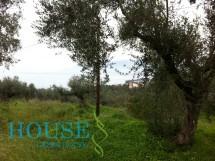 Land for sale in Kalamata, Messinia