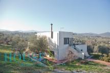 House for sale in Άγιοι Θεοδωροι